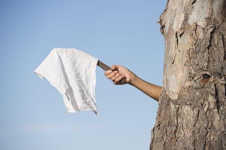 Brazo y mano de la persona que se esconde detrás del árbol con bandera blanca, tela o pañuelo como signo de paz, renuncia y negociaciones, con cielo azul como fondo al aire libre y espacio de copia. Foto de archivo