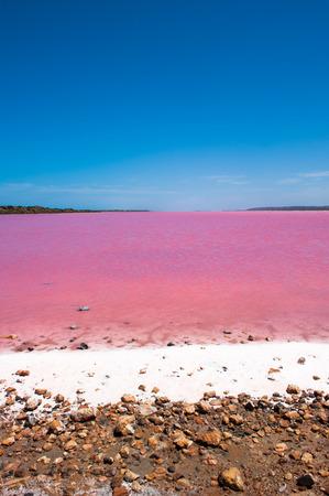 desierto: Esc�nico colorido rosa Salt Lake en el Port Gregory en Australia Occidental, causada por las algas en el agua, el verano soleado cielo azul, vista panor�mica, horizonte.
