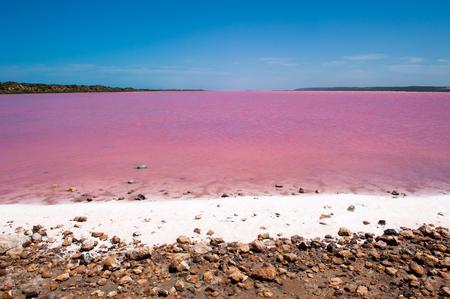 jezior: Scenic kolorowe Różowy Salt Lake w Australii Zachodniej, spowodowane przez glony w wodzie, słoneczny letni błękitne niebo, widok panoramiczny horyzoncie, miejsca kopiowania. Zdjęcie Seryjne