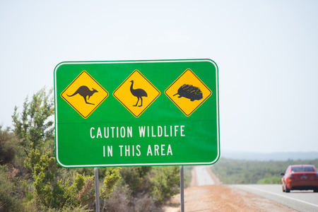 echidna: Wildlife Traffic Warning Sign on highway in remote outback Australia with Kangaroo, Emu and Echidna as symbols, passing car, blurred background, copy space. Stock Photo