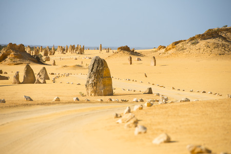 western australia: Desert landscape of Pinnacles in Nambung National Park, in remote outback of Western Australia, north of Perth, blue sky, horizon, copy space.