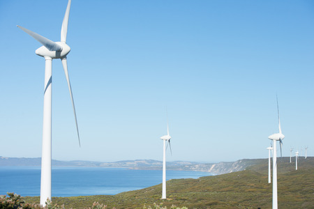 power in nature turbine: Wind farm along coast of Southern Ocean in Western Australia, producing renewable clean energy to town of Albany, summer sunny blue sky, copy space.