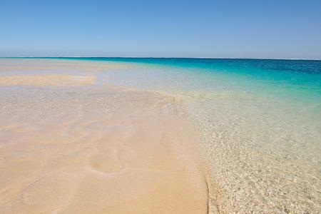 paradise beach: Tropical paradise beach with turquoise ocean, summer sunny blue sky, horizon, copy space.