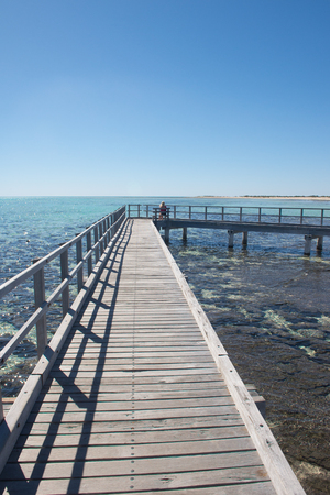 shark bay: Blonde woman sitting on boardwalk overlooking scenic Shark Bay Hamelin Pool with Stromatolites, copy space, blue sky.
