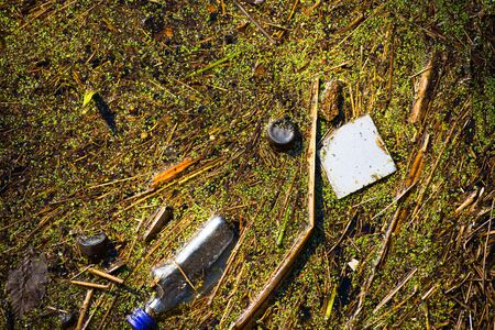 dumped: Close up Illegal Dumped household rubbish floating on water of lake, pond or river, contaminating, poisoning  environment.