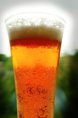 vaso de precipitado: Cerveza de cristal en el fondo del bosque y del cielo.