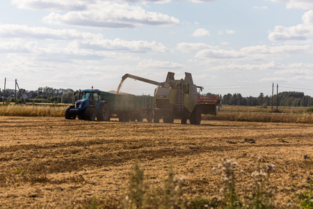 Combine harvester on a wheat field with tractor. Stock Photo