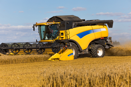 commodities: Yellow combine harvester on a wheat field with blue sky. Foto de archivo