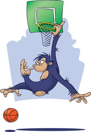 Chimpanzee playing basketball