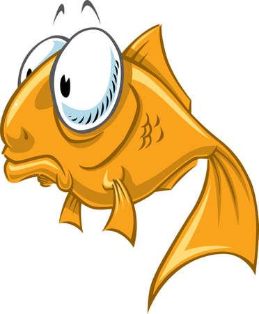 freshwater fish: Goldfish alone