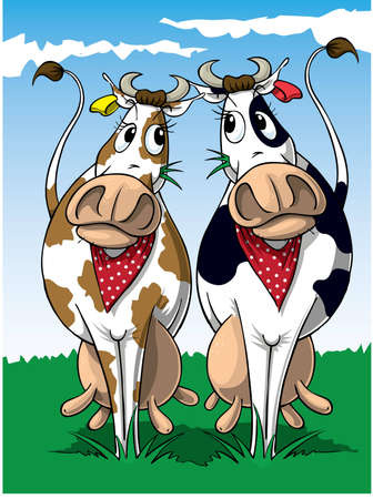 Two Cows photo