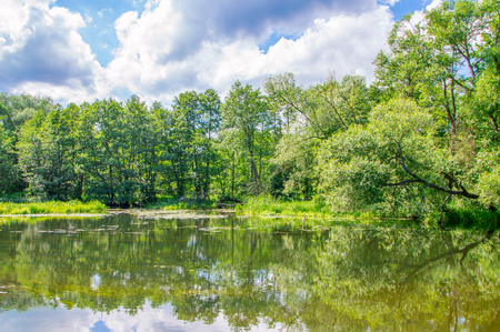edges: Landscape view with trees and water.