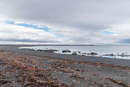 Seashore at Seltjorn on Iceland at cloudy day.