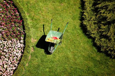 Work in garden - repairing new flower beds