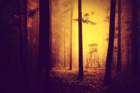 deer stand: Grunge yellow red colored dark and scary light in forest with hunting tower. Halloween colored forest hunting tower with grunge effect. Stock Photo