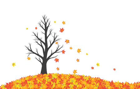 maple tree: Beautiful colorful autumn season maple tree with red, yellow, orange, green and gold colored leaves on countryside field. Fall season tree with leaves illustration isolated on white with copy space background.