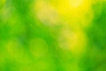추상 모호한 자연 축구 녹색 배경입니다.