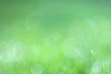 봄 햇살 녹색 blured 배경입니다. 사용 된 컬러 필터 효과. 스톡 콘텐츠