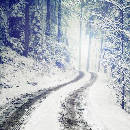 흐릿한 판타지 색상, 설 원 하 고 얼음 겨울 숲 도로.