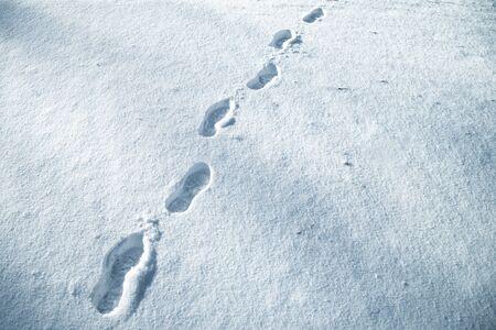 눈이 초원에 신선한 눈이 구두 지문. 블루 컬러 필터가 사용되었습니다.