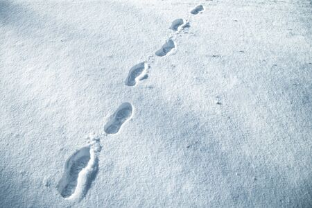 Shoe prints in fresh snow on snowy meadow. Blue color filter used.