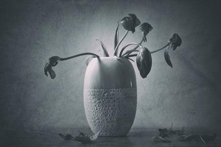 Stil: Wilted flowers in vase illustrates mourning, loss and grief. Grunge textured, monochrome stil life.