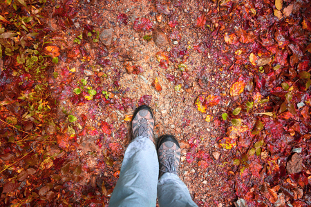 personal perspective: Person walking on the forest path with colorful wet autumn season leaves. Autumn season person walk. Conceptual autumn season photo, point of view perspective used. Stock Photo
