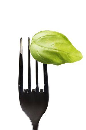one green basil leaf on fork Stock Photo - 7446889