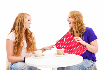 jealous woman looking at the shopping bag of her happy friend on white background Stock Photo - 22858893