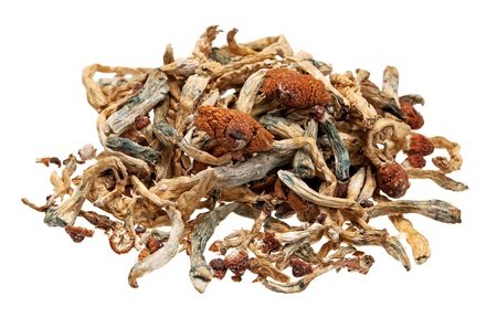 A pile of magic mushrooms isolated on white