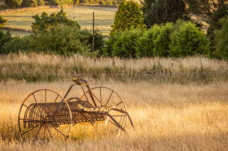 Antique hay rake in a farmers field at sunset.