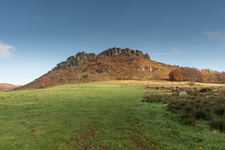 An autumnal Hen Cloud against a beautiful blue sky at the Roaches in the Peak District National park.
