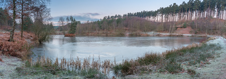 The woods and shoreline of the fishing lakes at Cannock Chase, AONB in Staffordshire.
