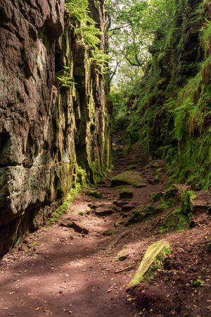 Luds Church chasm of the Sir Gawain and the Green Knight fame at The Roaches, in the Peak District National Park, UK.