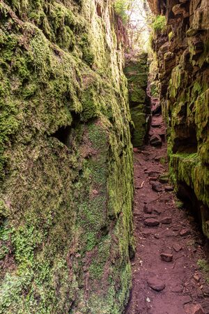 Lud's Church chasm of the Sir Gawain and the Green Knight fame at The Roaches, in the Peak District National Park, UK.