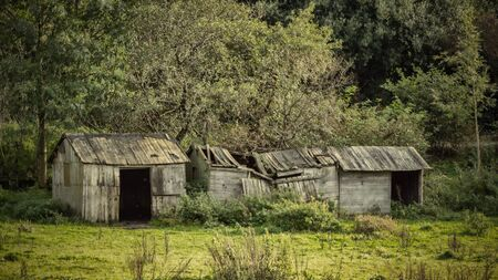 Derelict disused timber outbuildings and woodland in the English countryside. 스톡 콘텐츠 - 132786733