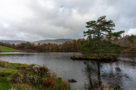 Beautiful and moody morning fall light at Tarn Hows in the English Lake District with views of Yewdale Crag, and Holme Fell during autumn. 스톡 콘텐츠 - 133067331