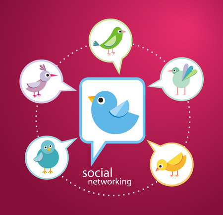 social gathering: Social media communication network concept. Set of different birds in bubble cartoon design style