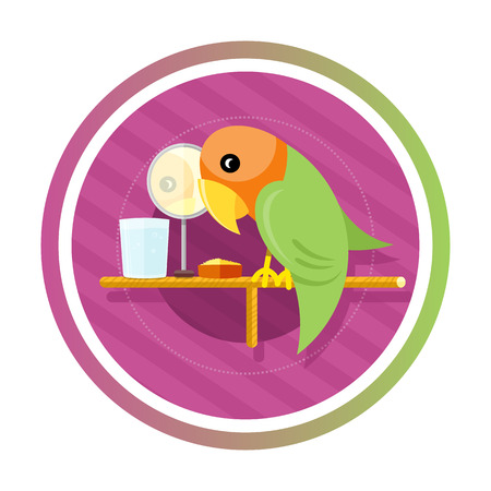 Orange green parrot with a mirror, water and food isolated on white background. Concept in cartoon style Vector