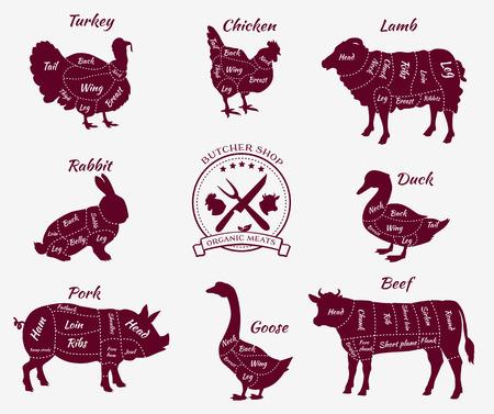 Stel een schematisch aanzicht dieren slagerij. Koe en varkens, runderen en varkens, kip en lamsvlees, rundvlees en konijnen, eenden en varkens, ganzen en kalkoenen, vlees illustratie Stock Illustratie