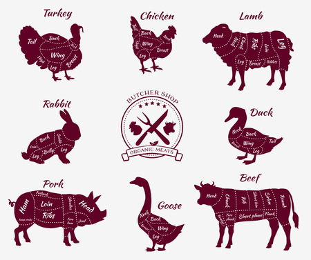 Set a schematic view of animals for butcher shop. Cow and pork, cattle and pig, chicken and lamb, beef and rabbit, duck and swine, goose and turkey, meat illustration Illustration