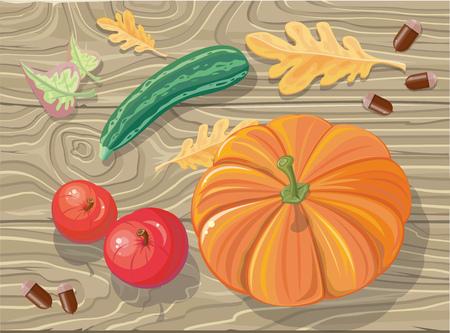 fall harvest: Set of autumn fetuses squash, apples, acorns. Autumn fruits, autumn, fall vegetables, autumn food, autumn harvest, food agriculture, fresh nature, healthy pumpkin, vegetarian harvest illustration Illustration