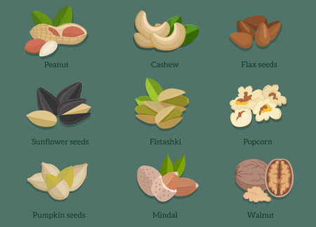 flax: Set natural walnut grain flat design. Pistachio and popcorn, seed flax, cashew and mindal, walnut and almond, sunflower and peanut, pumpkin and food illustration Illustration