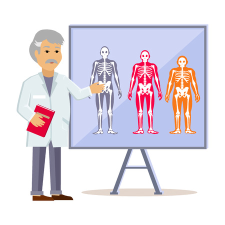 physique: Doctor shows type human body. Ectomorph endomorph and mesomorph, skeleton people, health physique, healthy figure, healthcare human,  structure normal illustration Illustration