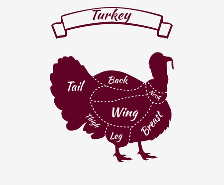 cut: Farm bird silhouette turkey meat cuts. Butcher shop logo. Cartoon turkey holding. Turkey icon. Vector illustration of a turkey. Cute Thanksgiving turkey. Turkey Thanksgiving celebration design