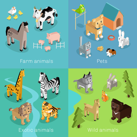 lion cartoon: Wild exotic and farm animal set isometric. Pet dog bird, animals vector, cartoon animals, cat and lion, horse and tropical wildlife, mammal creature illustration. Isometric animal set Illustration