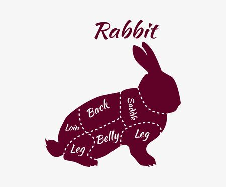 bunny rabbit: Vintage diagram guide for rabbit cutting. Vintage typographic rabbit butcher cuts diagram. Rabbit cuts diagram for butcher shop. Quarter of raw rabbit. Organic rabbit meat parts. Vector illustration