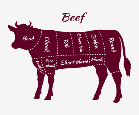 beef: American cuts of beef. Scheme of beef cuts for steak and roast. Butcher cuts scheme. Beef cuts diagram in vintage style. Meat cutting beef. Menu template grilling steaks and cow. Vector illustration Illustration