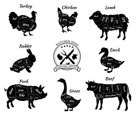 Ustaw schematyczny widok zwierząt do sklepu mięsnego. Krowa i wieprzowiny, bydła i trzody chlewnej, drobiu i jagnięciny, wołowiny i królika, kaczki i świnie, gęsi i indyka, mięso ilustracji. Kawałki mięsa wektor