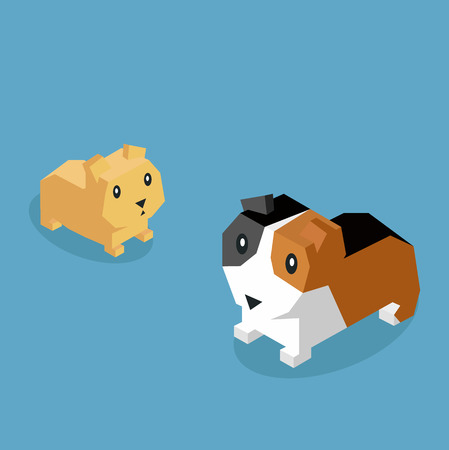guinea pig: Pets guinea pig icon isometric 3d. Illustration
